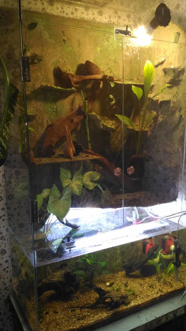 Освещение для аквариума своими рука 57