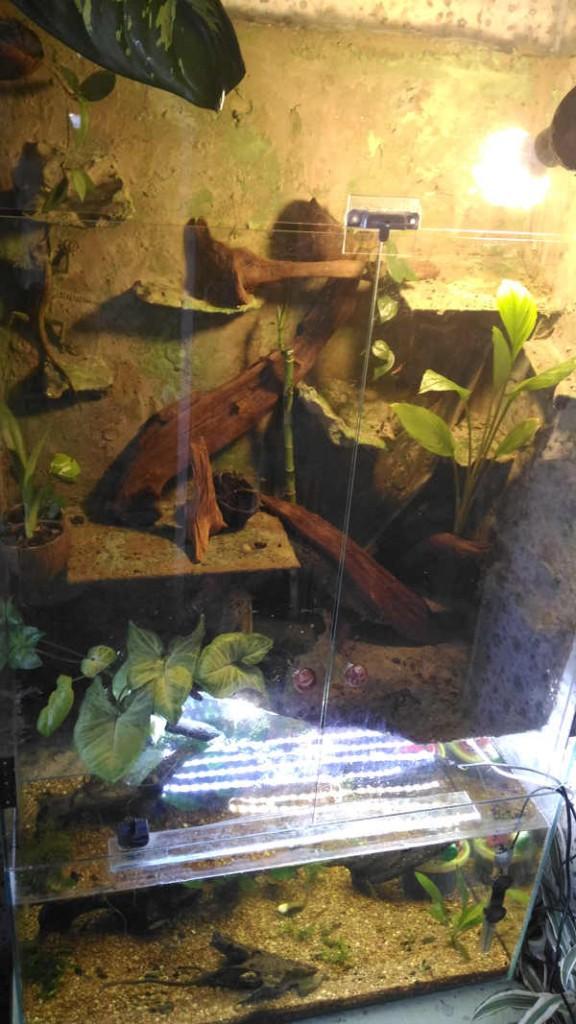 освещение аквариума своими руками светодиоды